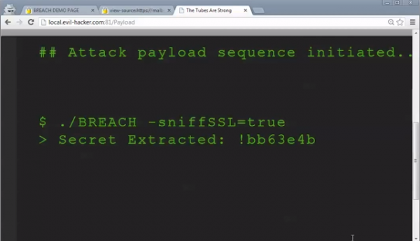 https-encrypted-data-in-30-seconds
